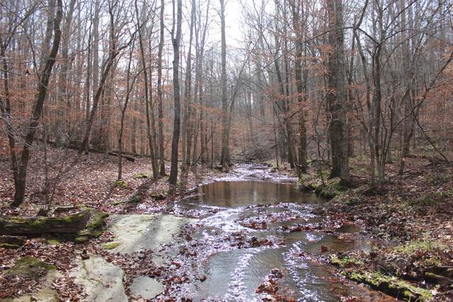 0 Forrest Glenn Rd, Fairview, TN 37062 (MLS #RTC2209504) :: Village Real Estate