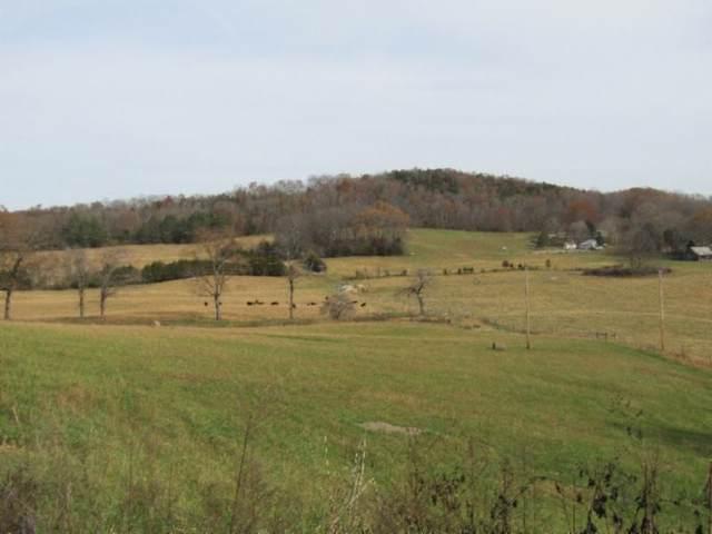 10 Walker Cove Rd, Sparta, TN 38583 (MLS #RTC2209591) :: Village Real Estate