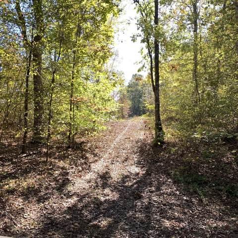 0 Deer Haven Rd, Indian Mound, TN 37079 (MLS #RTC2209911) :: Hannah Price Team