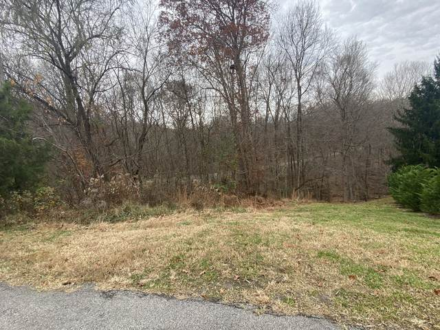 589 Briarwood Dr, Clarksville, TN 37040 (MLS #RTC2210075) :: The Miles Team | Compass Tennesee, LLC