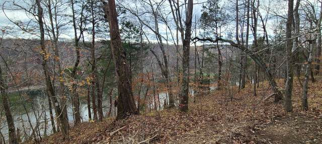 24 Allens Bend Rd, Smithville, TN 37166 (MLS #RTC2211145) :: Village Real Estate