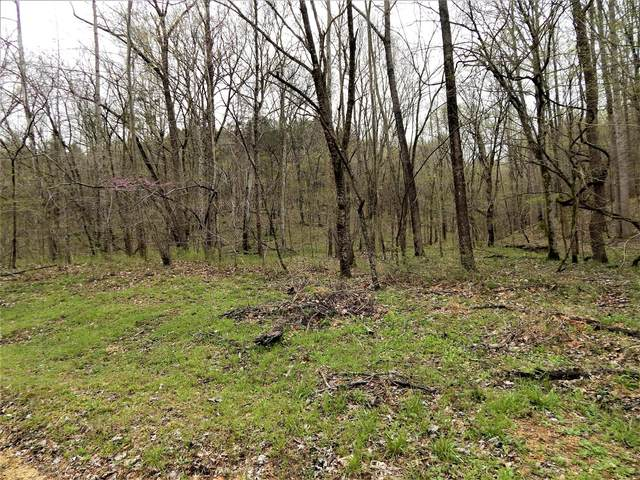 0 Warren Hollow Rd, Clifton, TN 38425 (MLS #RTC2211439) :: The Kelton Group