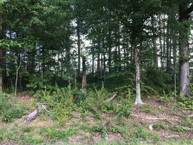 0 Deep Cut Road, Erin, TN 37061 (MLS #RTC2212784) :: Village Real Estate