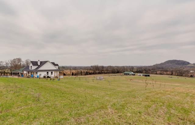 6720 Polk Ln, Columbia, TN 38401 (MLS #RTC2213057) :: Nashville on the Move
