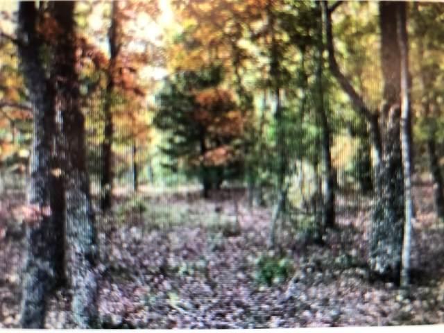 0 Briley Rd, Smyrna, TN 37167 (MLS #RTC2214627) :: The Huffaker Group of Keller Williams