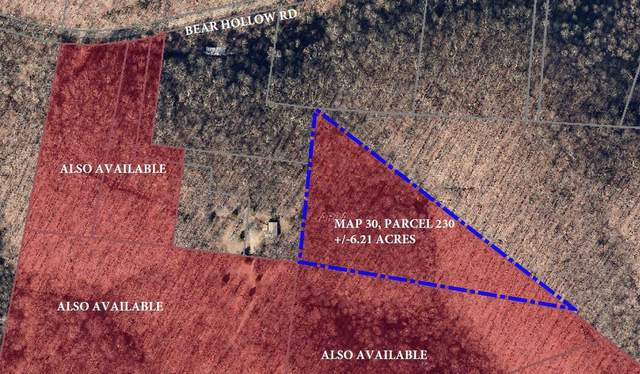 0 Bear Hollow Rd, Joelton, TN 37080 (MLS #RTC2215279) :: Village Real Estate