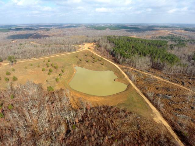 698 7 Mile Ridge Rd., Indian Mound, TN 37079 (MLS #RTC2215535) :: RE/MAX Homes And Estates
