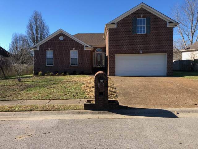 205 Baylee Mika Pl, Joelton, TN 37080 (MLS #RTC2215943) :: RE/MAX Homes And Estates