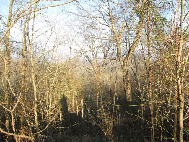 7 Coconut Ridge Rd, Smithville, TN 37166 (MLS #RTC2216351) :: Maples Realty and Auction Co.