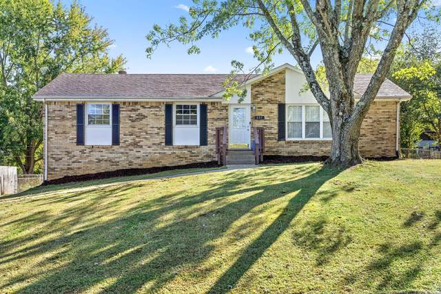 537 Morrison Dr, Clarksville, TN 37042 (MLS #RTC2217197) :: RE/MAX Homes And Estates