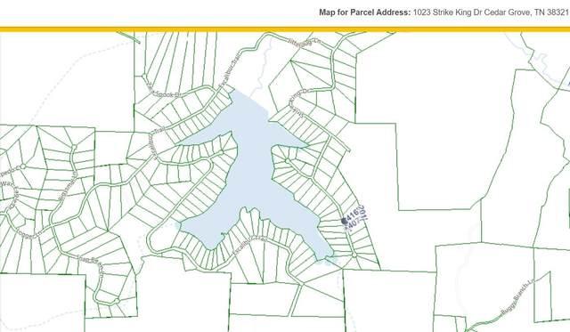1023 Strike King Dr, Cedar Grove, TN 38321 (MLS #RTC2217593) :: Village Real Estate