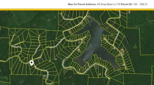 48 Snap Bean Ln, Cedar Grove, TN 38321 (MLS #RTC2217607) :: Village Real Estate