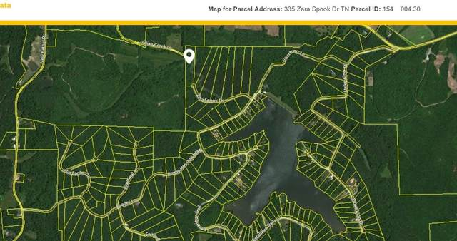 335 Zara Spook Dr, Cedar Grove, TN 38321 (MLS #RTC2218301) :: Ashley Claire Real Estate - Benchmark Realty