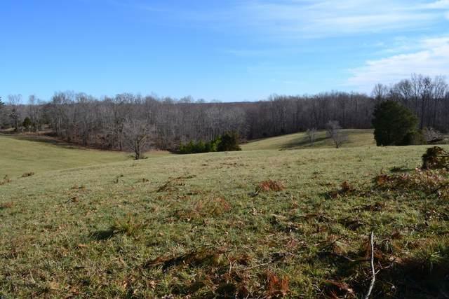 2 Barber Hwy, Cumberland City, TN 37050 (MLS #RTC2218378) :: Village Real Estate