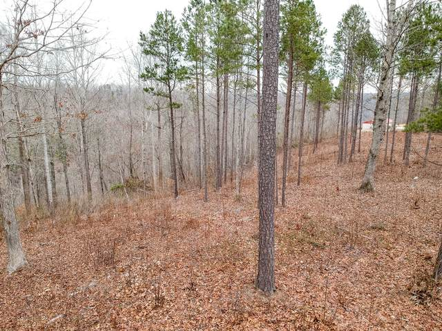 0 Antler Dr, Smithville, TN 37166 (MLS #RTC2218451) :: John Jones Real Estate LLC