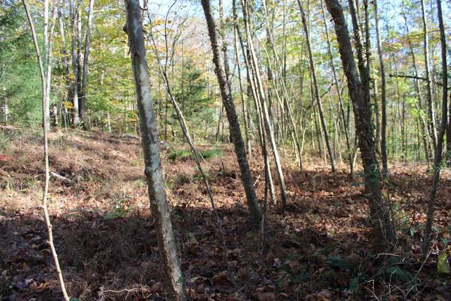 0 Kristin Dr, Centerville, TN 37033 (MLS #RTC2218489) :: Maples Realty and Auction Co.