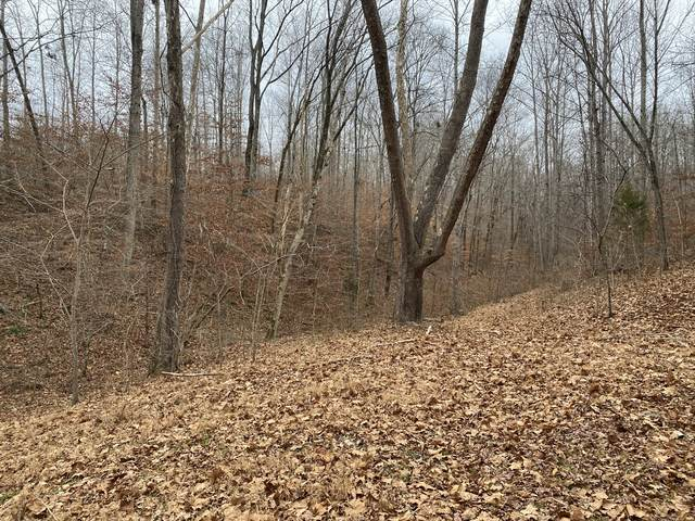 1567 Terrell Branch Rd, Centerville, TN 37033 (MLS #RTC2219231) :: Village Real Estate