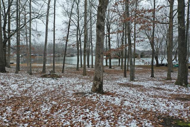 668 Lakeshore Dr, Beechgrove, TN 37018 (MLS #RTC2219398) :: DeSelms Real Estate