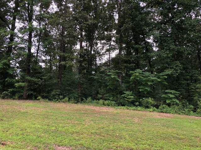 45 Arrowhead Pt, Cedar Grove, TN 38321 (MLS #RTC2219465) :: Village Real Estate
