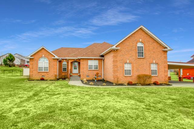 118 Tison Ln, Cottontown, TN 37048 (MLS #RTC2219605) :: Hannah Price Team