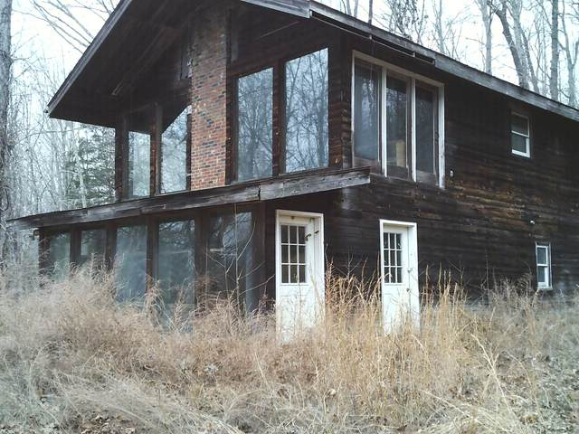 225 Lineport Rd, Bumpus Mills, TN 37028 (MLS #RTC2219625) :: Maples Realty and Auction Co.