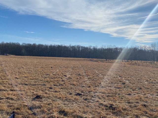 1 Cornelison Rd, Manchester, TN 37355 (MLS #RTC2220492) :: Berkshire Hathaway HomeServices Woodmont Realty