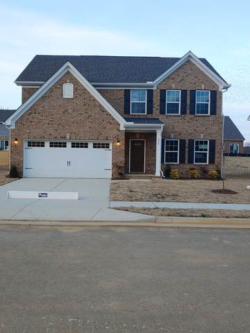 808 Twin Falls Drive, Joelton, TN 37080 (MLS #RTC2220966) :: DeSelms Real Estate
