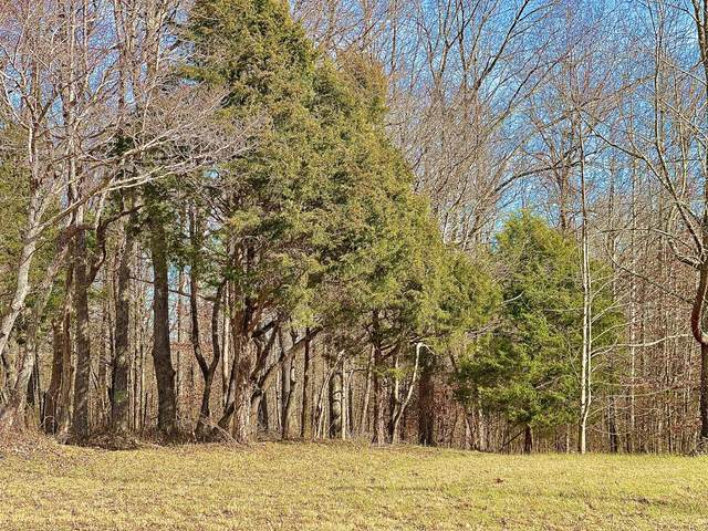 1029 Fort Hill Rd, Portland, TN 37148 (MLS #RTC2221616) :: Nashville on the Move