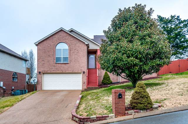 3084 Liberty Hills Drive, Franklin, TN 37067 (MLS #RTC2222816) :: Nelle Anderson & Associates