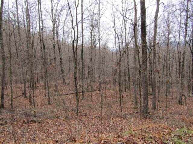 222 .42Ac Holden Hollow Rd, Jamestown, TN 38556 (MLS #RTC2223322) :: Cory Real Estate Services