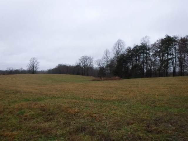 2 Arrowhead Rd, Moss, TN 38575 (MLS #RTC2223506) :: The Kelton Group