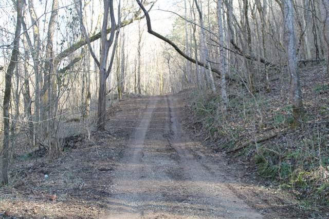 0 Williford Ln, Gainesboro, TN 38562 (MLS #RTC2223543) :: Village Real Estate