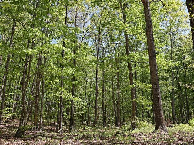 0 Grouse Ridge Rd, Harriman, TN 37748 (MLS #RTC2223699) :: Village Real Estate