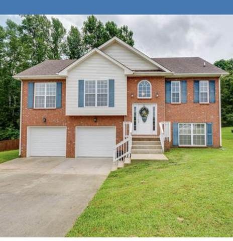 1181 Channelview Dr, Clarksville, TN 37040 (MLS #RTC2223730) :: Team George Weeks Real Estate