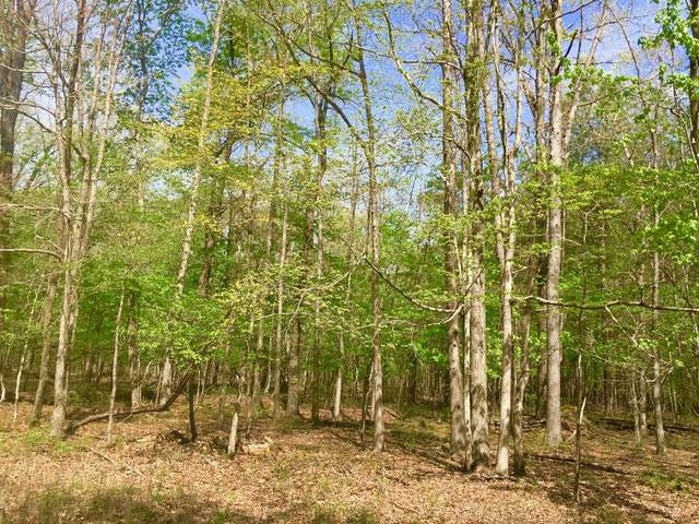 1 Chickory Ln, Monteagle, TN 37356 (MLS #RTC2223823) :: Berkshire Hathaway HomeServices Woodmont Realty