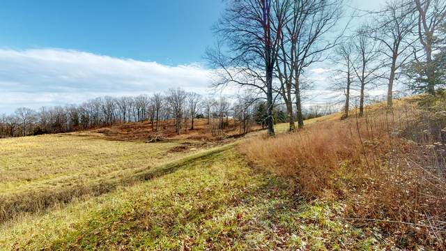 4889 Ash Hill Rd, Spring Hill, TN 37174 (MLS #RTC2224118) :: Keller Williams Realty