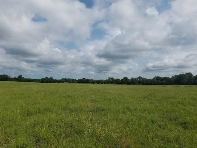 8 Green Acres Rd, Bell Buckle, TN 37020 (MLS #RTC2224249) :: FYKES Realty Group