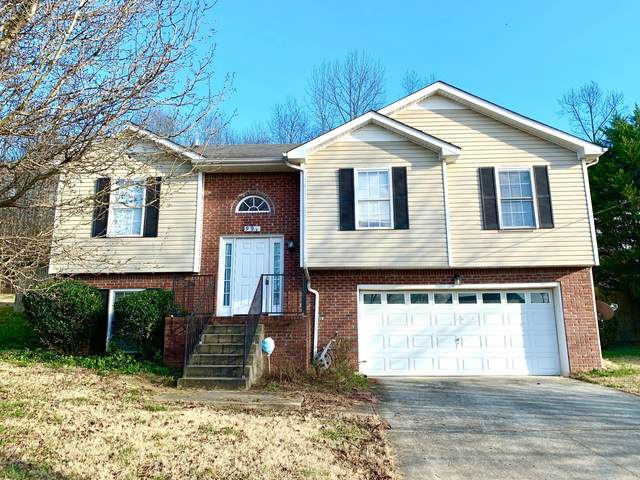 991 Hedge Apple Dr, Clarksville, TN 37040 (MLS #RTC2224848) :: Hannah Price Team