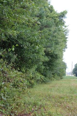 0 Old Railroad Bed Rd, Taft, TN 38488 (MLS #RTC2224975) :: Berkshire Hathaway HomeServices Woodmont Realty