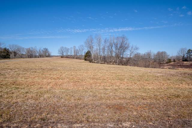 0 Hideout Hollow Rd, Clifton, TN 38425 (MLS #RTC2224976) :: Nashville on the Move