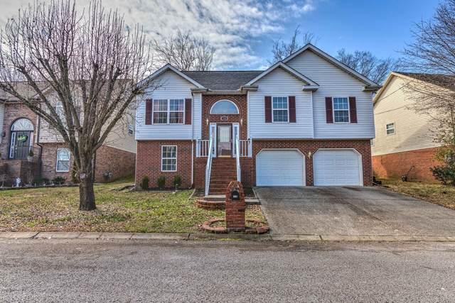 110 Edgewater Ct, Hendersonville, TN 37075 (MLS #RTC2228128) :: Village Real Estate