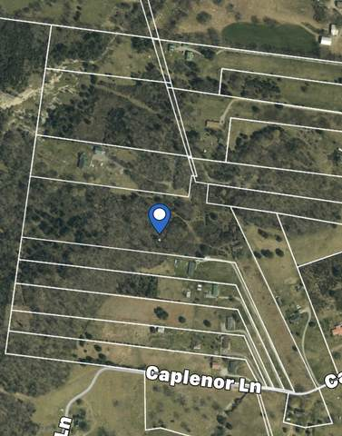 18 Caplenor Ln, Lebanon, TN 37090 (MLS #RTC2228137) :: RE/MAX Homes And Estates