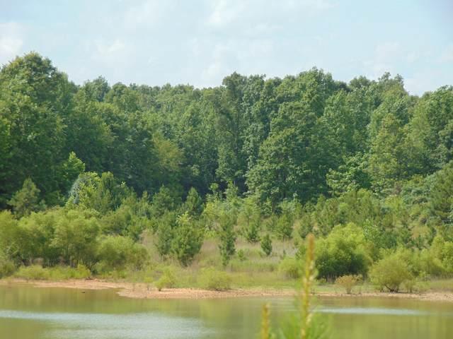 0 Aerie Lake Circle, Summertown, TN 38483 (MLS #RTC2228811) :: Kenny Stephens Team
