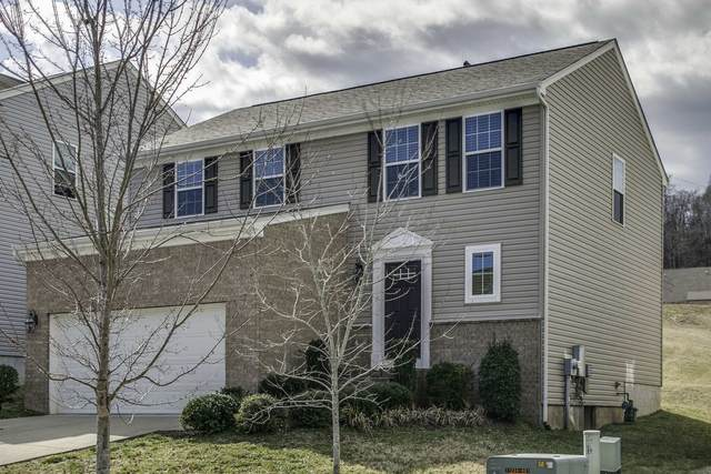 508 Wolfeboro Ln, Nashville, TN 37221 (MLS #RTC2229142) :: Kenny Stephens Team