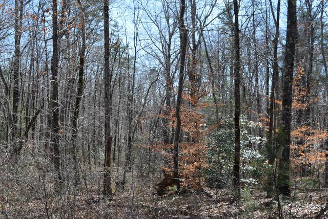 9 Dollar Lane, Altamont, TN 37301 (MLS #RTC2230747) :: Village Real Estate