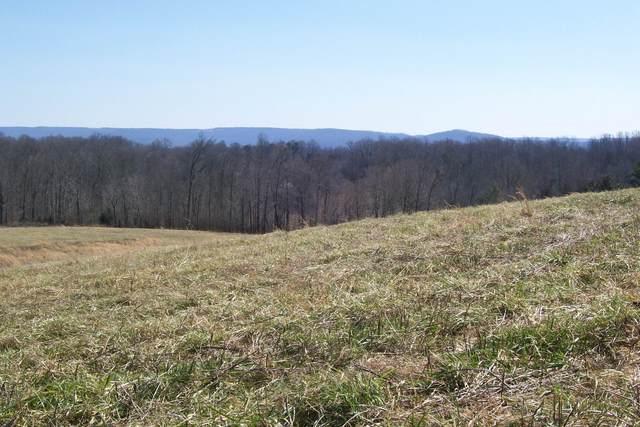 16800 Old Kentucky Road, Walling, TN 38587 (MLS #RTC2230773) :: Village Real Estate