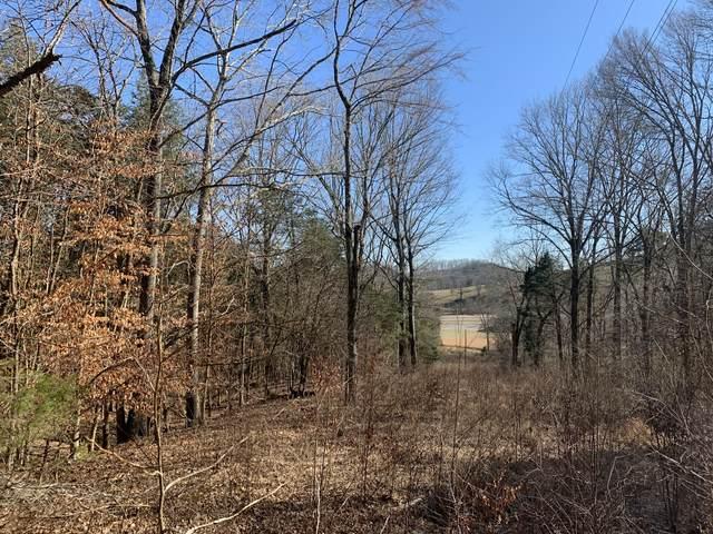 0 Us Highway 64, Pulaski, TN 38478 (MLS #RTC2230953) :: Village Real Estate