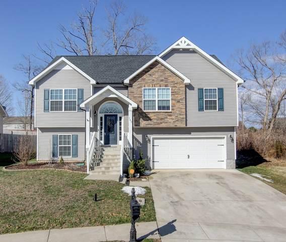 162 Sycamore Hill Dr, Clarksville, TN 37042 (MLS #RTC2231161) :: Nashville Home Guru