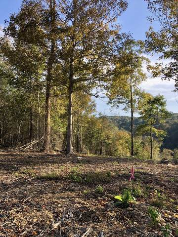 6021 Russell Ridge Ln, Franklin, TN 37064 (MLS #RTC2231233) :: Village Real Estate