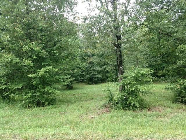 0 Skip Ave, Lawrenceburg, TN 38464 (MLS #RTC2231352) :: Real Estate Works